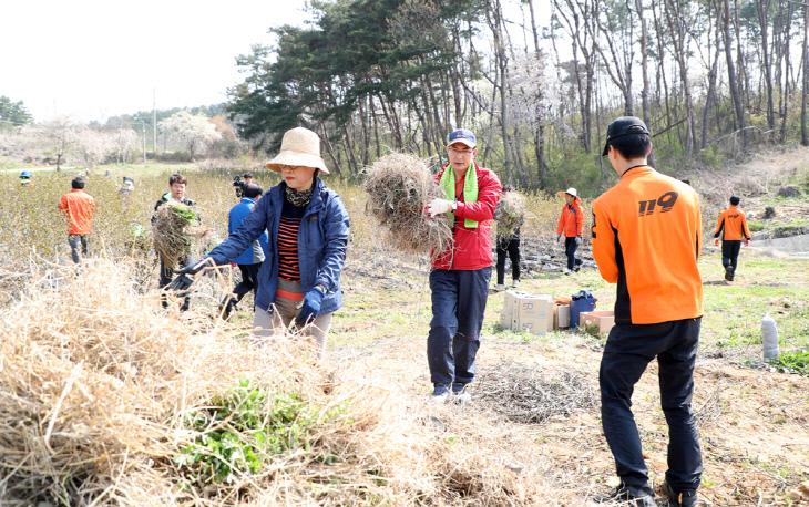 (서산)0417 서산발전협의회 농촌일손돕기 (3)