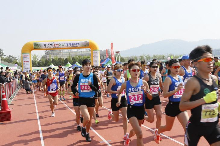 보성녹차마라톤대회개최 (1)