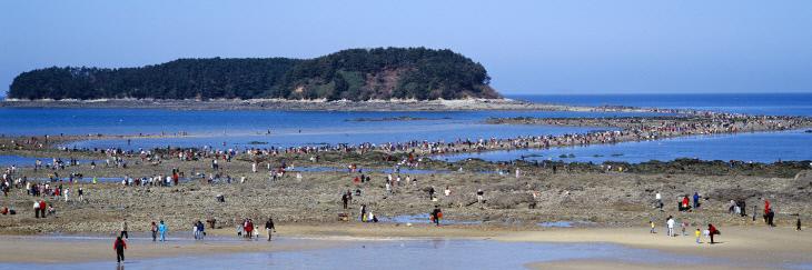 3.무창포해수욕장(신비의바닷길)