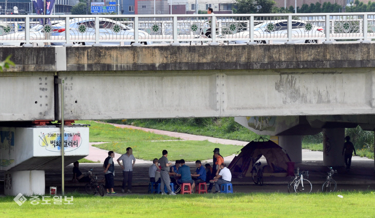 20180711-폭염 피해 다리밑 피신