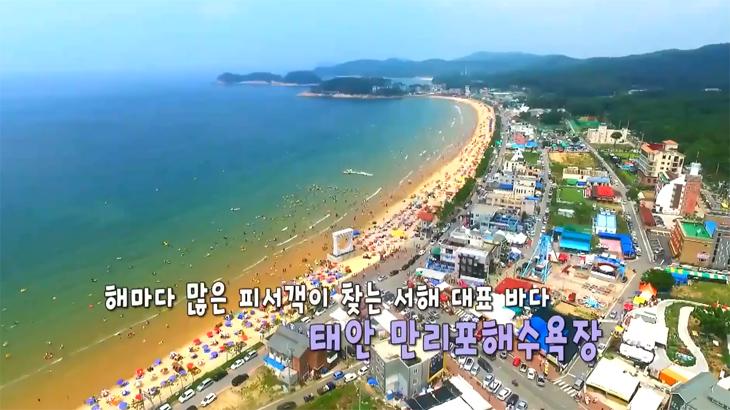 '충남 여름 특집 제 1탄 - 바다 편'사람구경 물구경 하러 떠나볼까요~