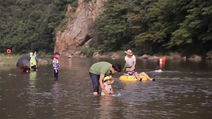 뼛속깊이 시원하고 맑은물로 유명한 청양 까치내 계곡으로 피서가자!