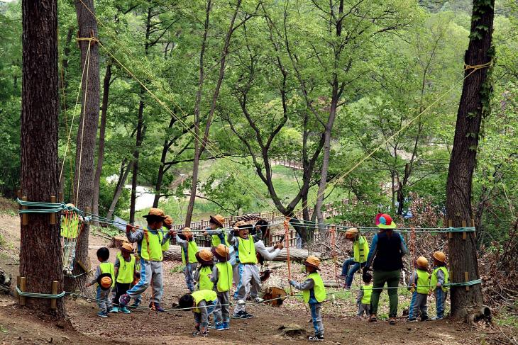 유아숲체험 사진4