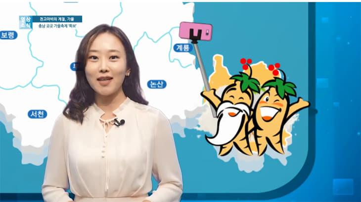 알차고 풍성한 '충남 가을 축제' 총정리!