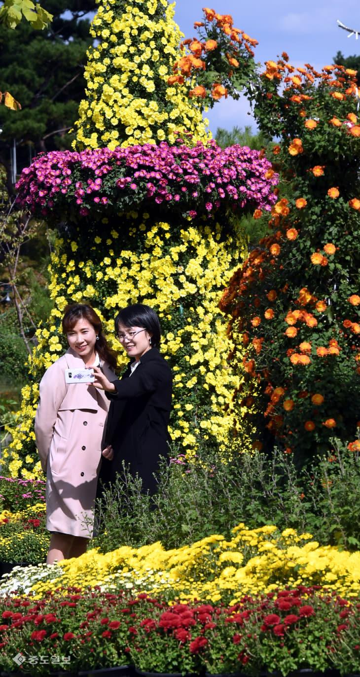 20181010-가을꽃 만개5