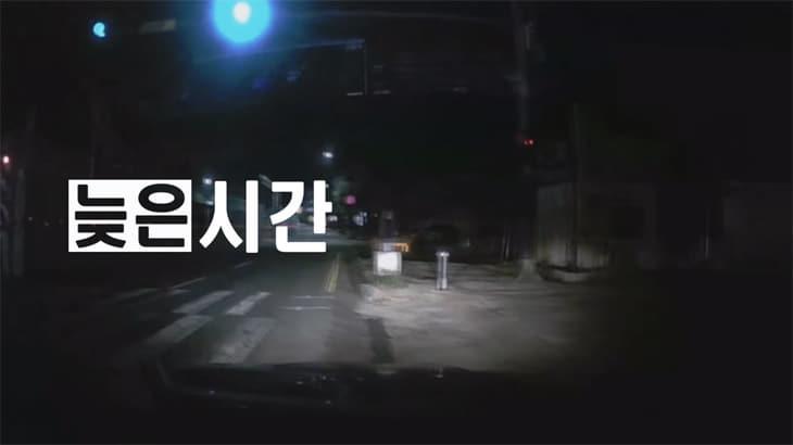 음주운전에 마약까지...블록버스터 급 현행범 긴급체포 영상!