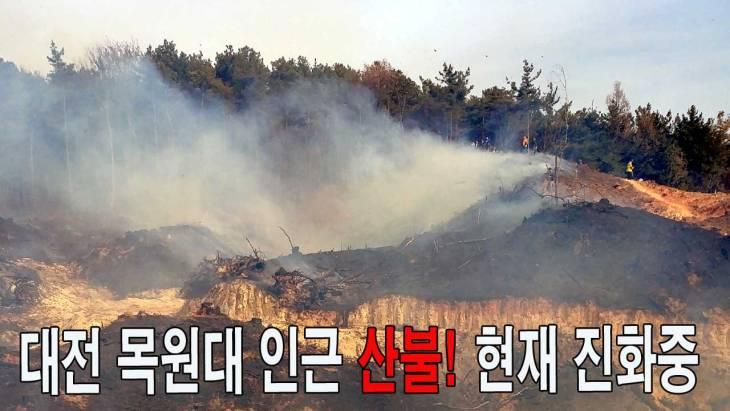 [영상]대전 목원대 인근 산불 발생! 현재 진화 중