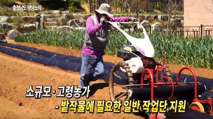 충남도, 영농철 맞아 바쁜 농촌 인력문제 해결하다(농작업지원단)
