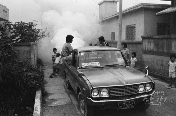 1981--_0