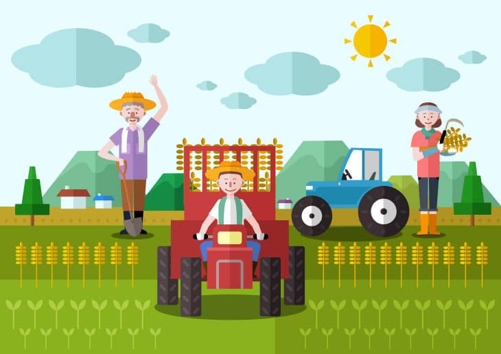 예산군, 강소농 「도시농업 전문가 양성 과정」교육생 모집
