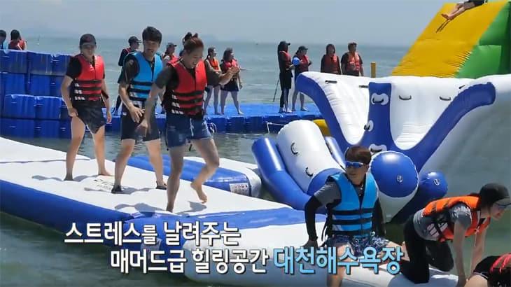 내비게이션 검색 1위 관광지! 대천해수욕장 개장!