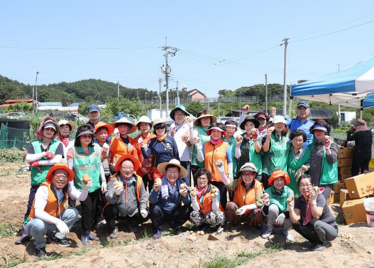 사진1.19.6.25 가수원동 동네마실2