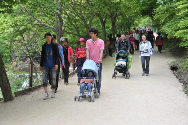 순창 0711 - 도내 관광객 만족도 1위 자료사진 강천산 DSC_2022