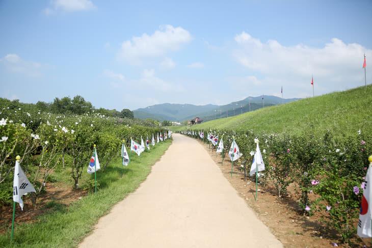(서산) 0814 서산해미읍성 태극기 무궁화동산 1