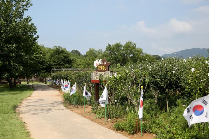 (서산) 0814 서산해미읍성 태극기 무궁화동산 2