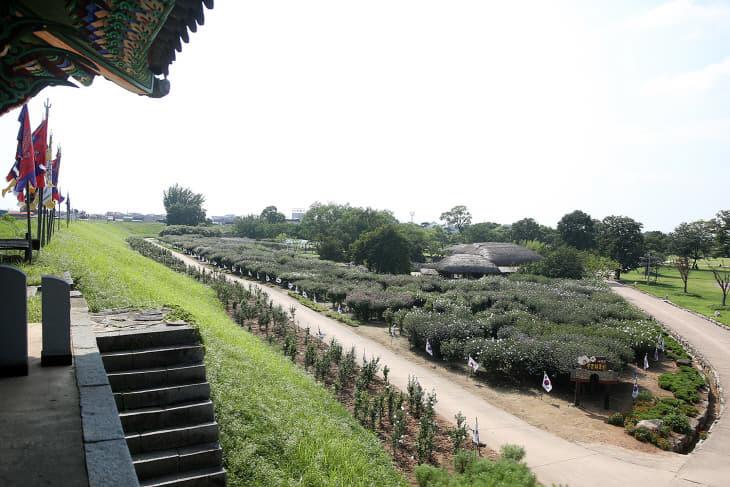 (서산) 0814 서산해미읍성 태극기 무궁화동산 3