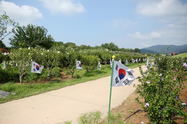 (서산) 0814 서산해미읍성 태극기 무궁화동산 5