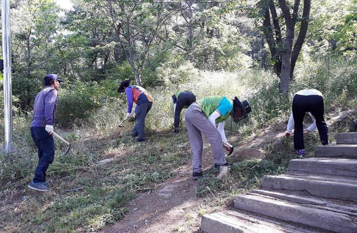 상반기 지역공동체 일자리사업 (1)