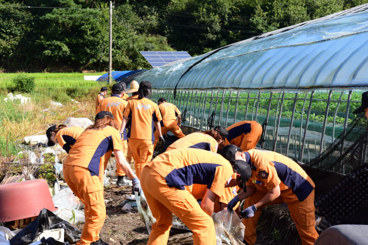 사본 -태풍피해농가 봉사활동