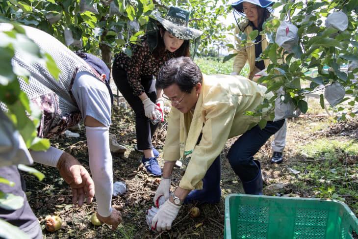 피해 농가 일손 봉사 (3)