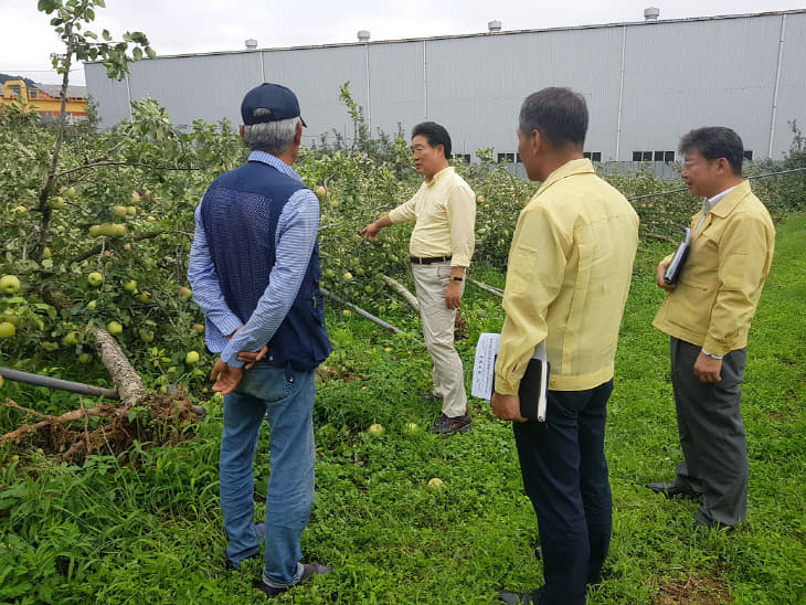 사본 -김홍장 시장 과수 피해농가 방문 (1) (1)