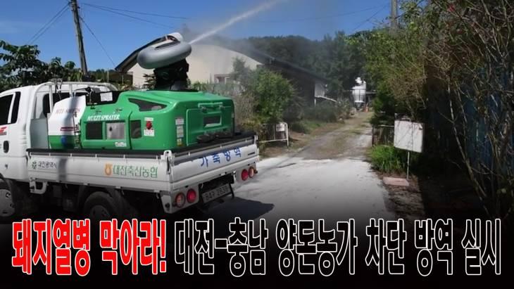 돼지열병 막아라! 대전-충남 양돈농가 차단 방역 실시
