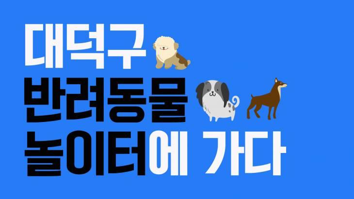 대전에 반려동물 놀이터가 생겼다고? 대덕구 반려동물 놀이터에 가다!