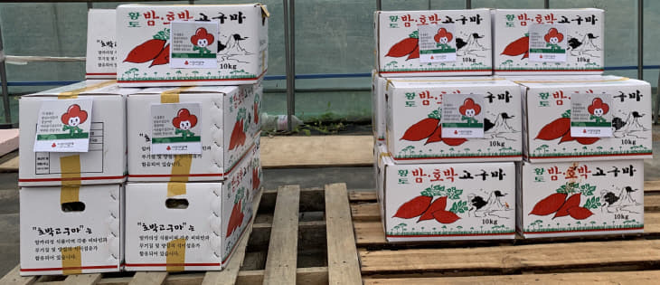 삽교읍 도청이전주민생계조합에서 기탁한 김치