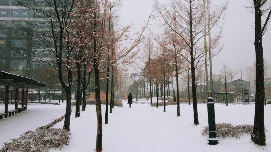 12월 3일 날씨