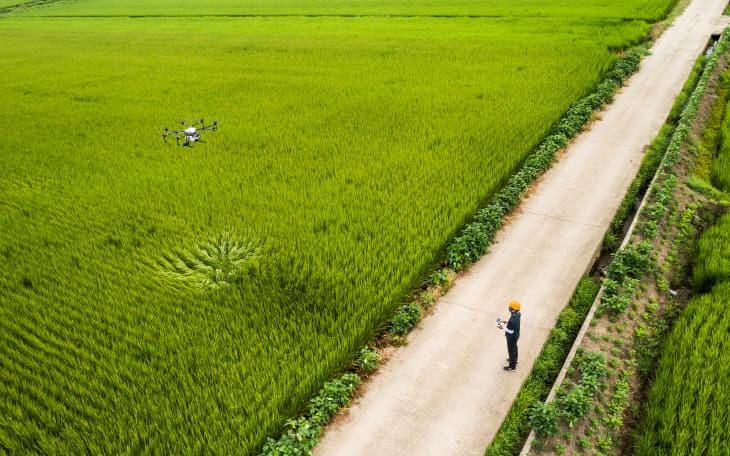 200217 드론조종 청년농업인