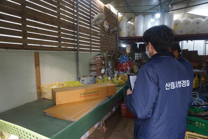 (0221)관련사진1-산림사법경찰이 유통조사를 하고있는 모습