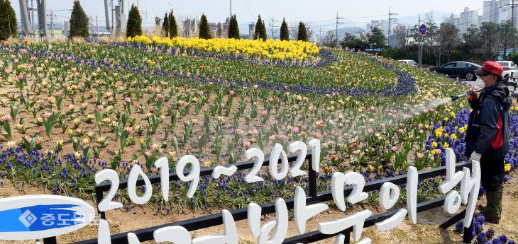 20200402-꽃에 물주기