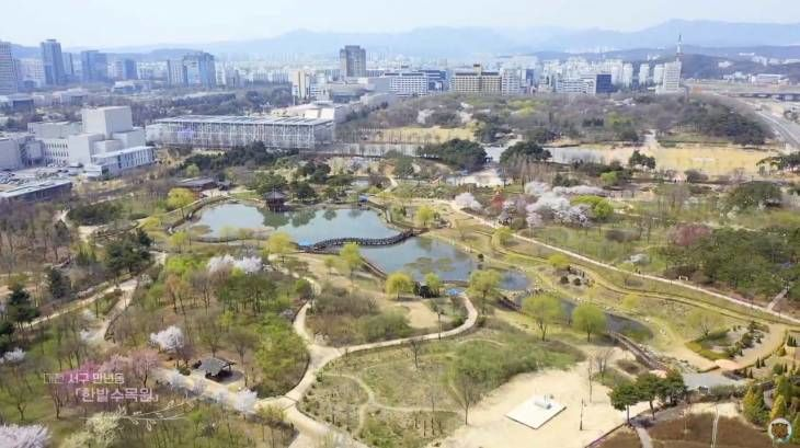 [영샹]곷향기 가득힌 도심속 봄 꽃의 향연! 대전 서구의 봄을 영상에 담았습니다.