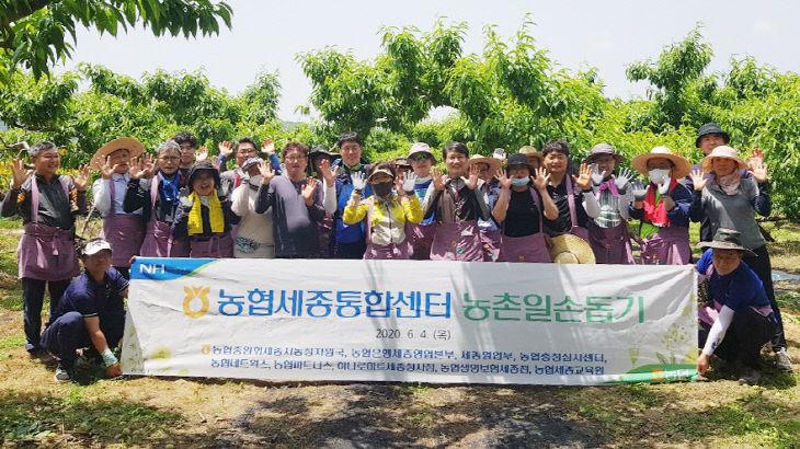 농협세종통합센터
