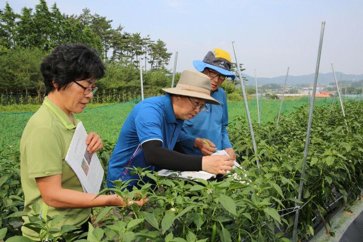 현장영농교육(인평리)