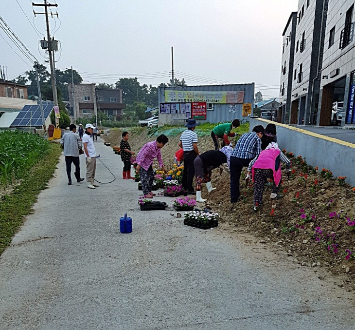 05-1 덕정2리 깨끗한 마을 가꾸기