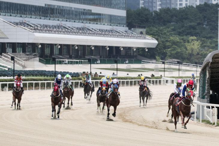 기획1 서울경마공원에서 활동하는 기수들의 경주모습