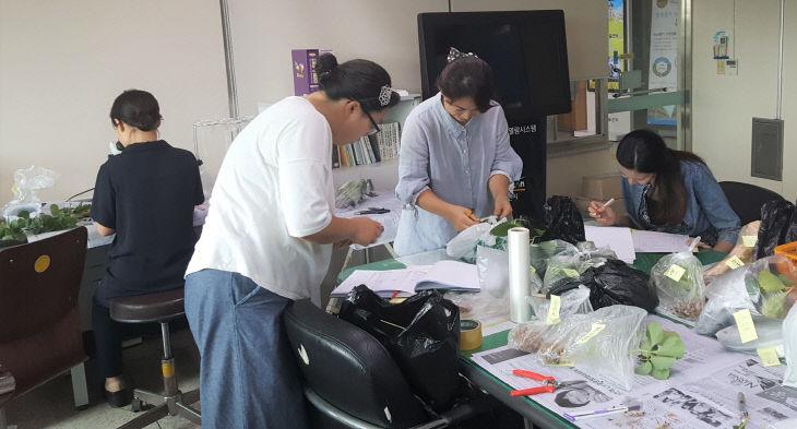 화아분화 및 병해충 검경