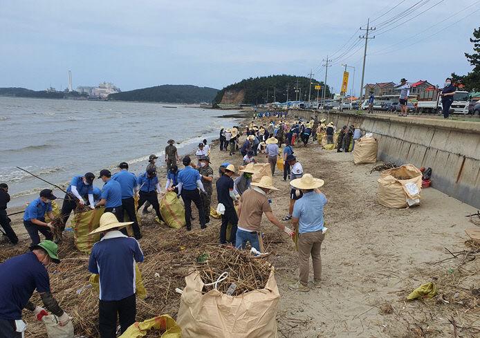 서천, 해안 수해쓰레기 수거