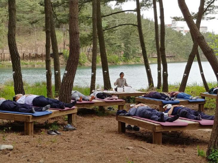 서천, 산림치유프로그램 인기몰이