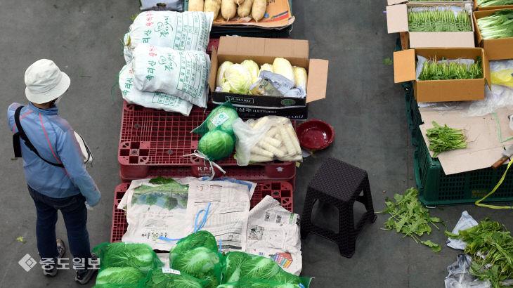 채소값 폭등에 장보기가 두려워진 주부들