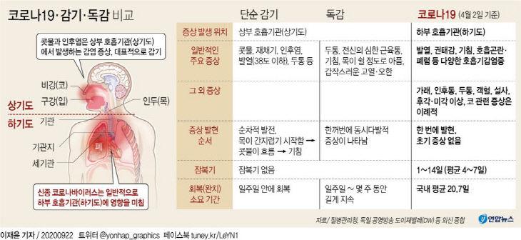 코로나19·감기·독감 비교