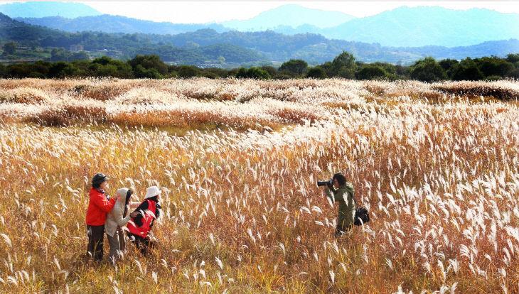 200925 비내섬 자연휴식지지정1
