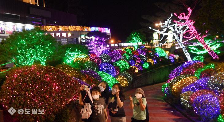 야간조명 밝힌 대전의 명소 '뿌리공원'