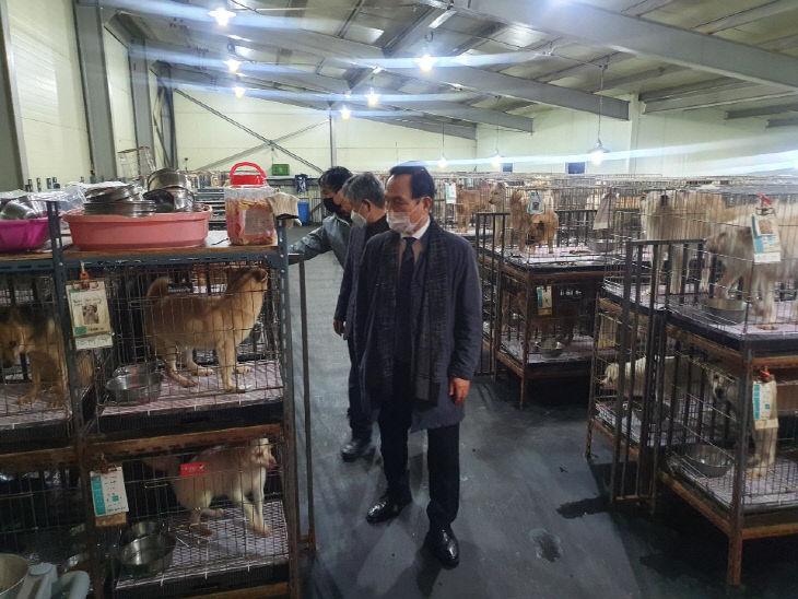 유기동물보호소 현장 점검1