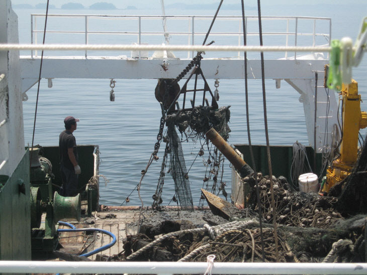 보령시가 해양쓰레기 수거 작업