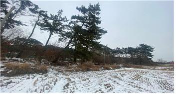충남도 서산시 대산읍 독곶리 소재 임야
