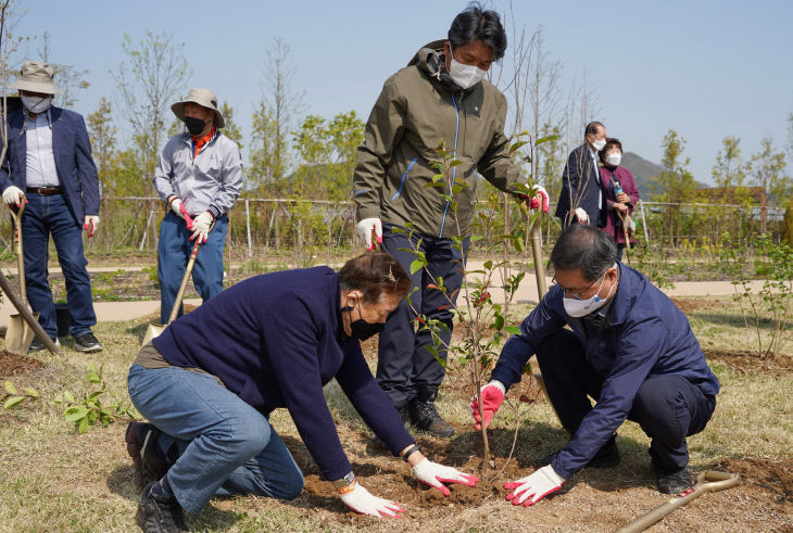 탄소중립 나무심기