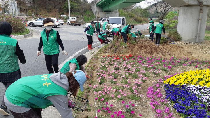 반포면새마을회 꽃밭 조성 사진 (1)