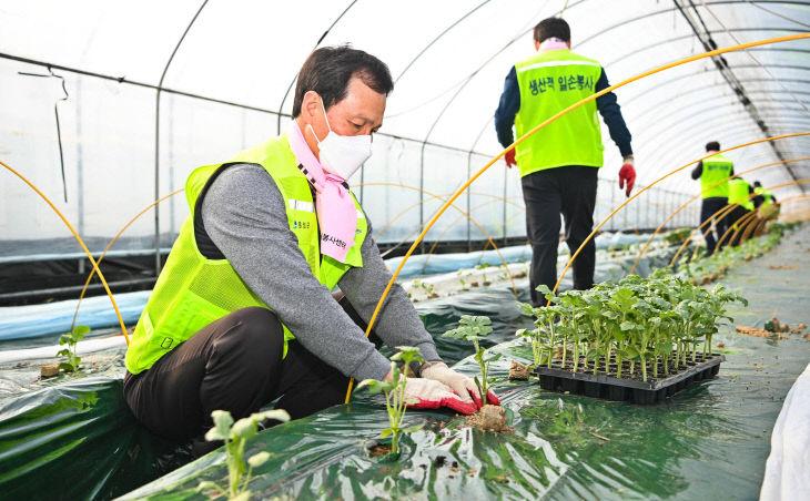 01-2 조병옥 음성군수 생산적 일손봉사(2월 19일)